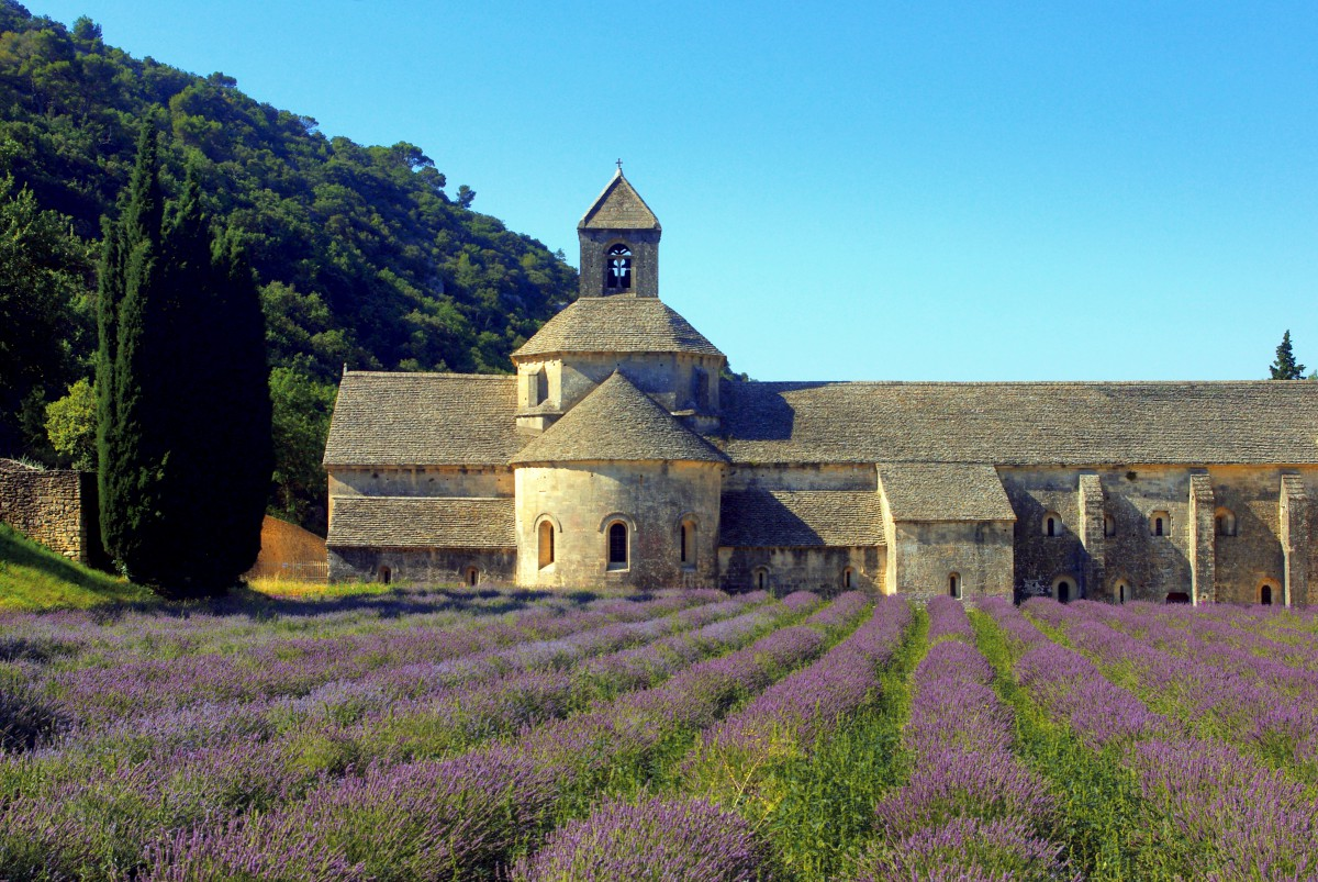 The abbey of Sénanque near Gordes © French Moments