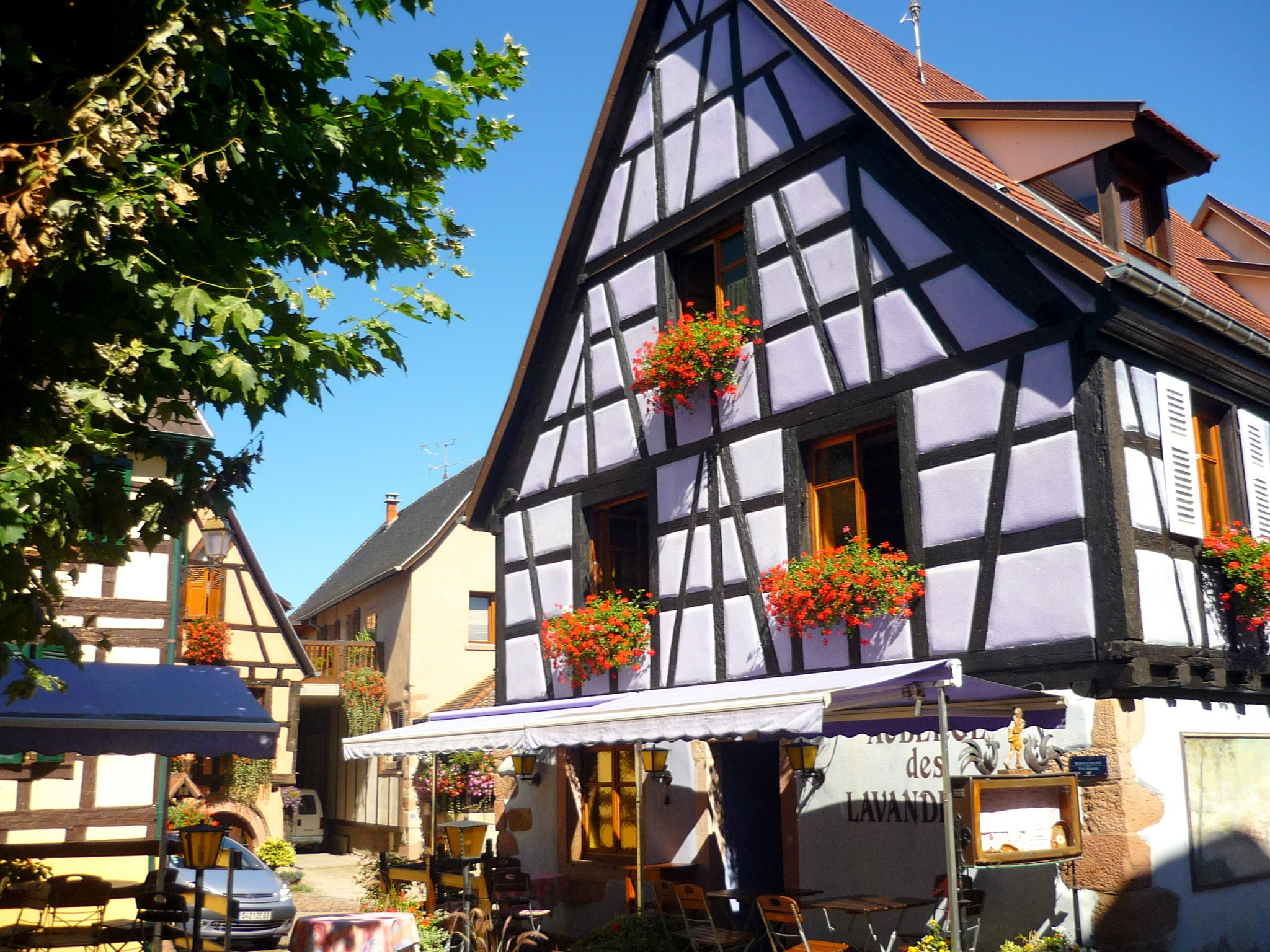 Half-timbered house in the village of Bergheim © French Moments