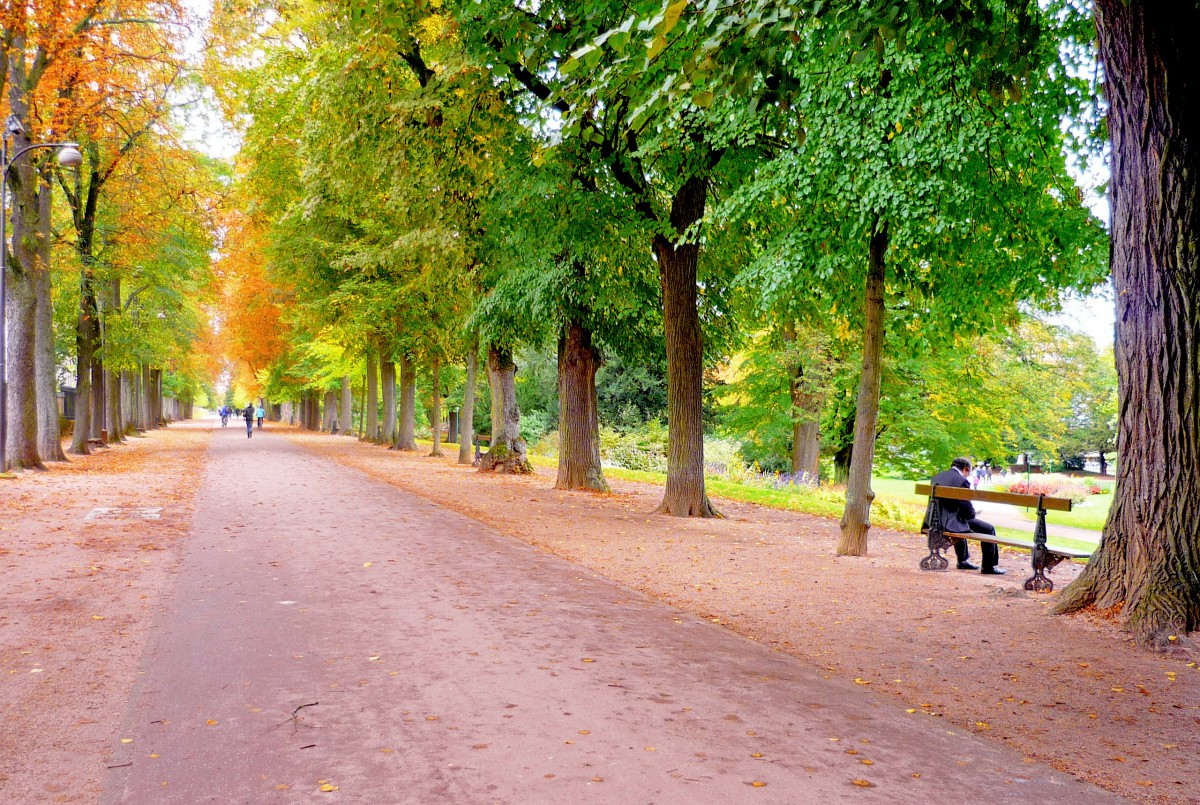 Things to see in Nancy: Parc de la Pépinière © French Moments