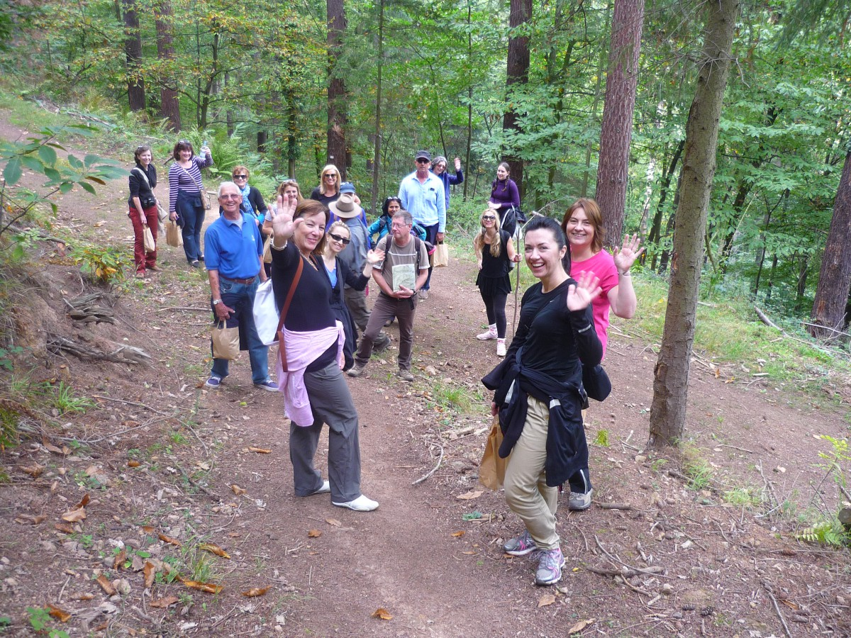 Hiking in the Vosges © French Moments