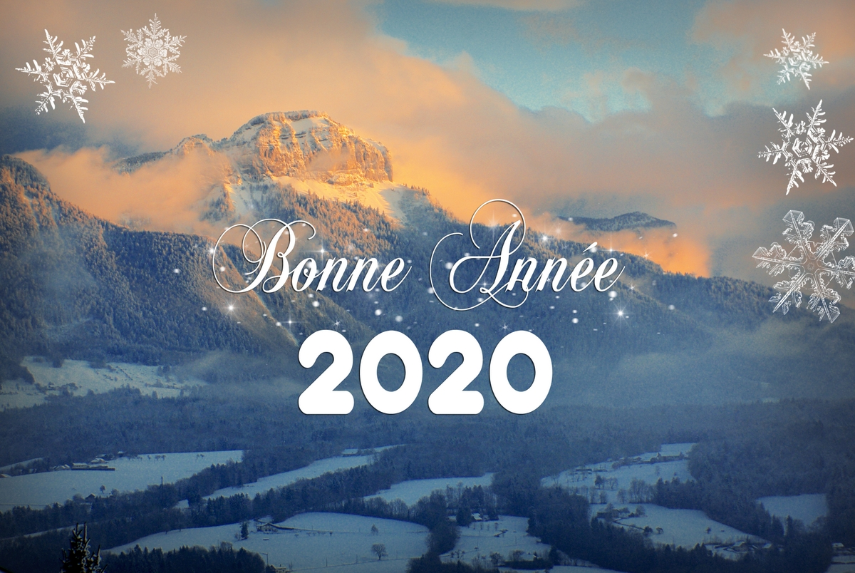 """Carte de vœux """"Bonne année 2020 !"""" © French Moments"""