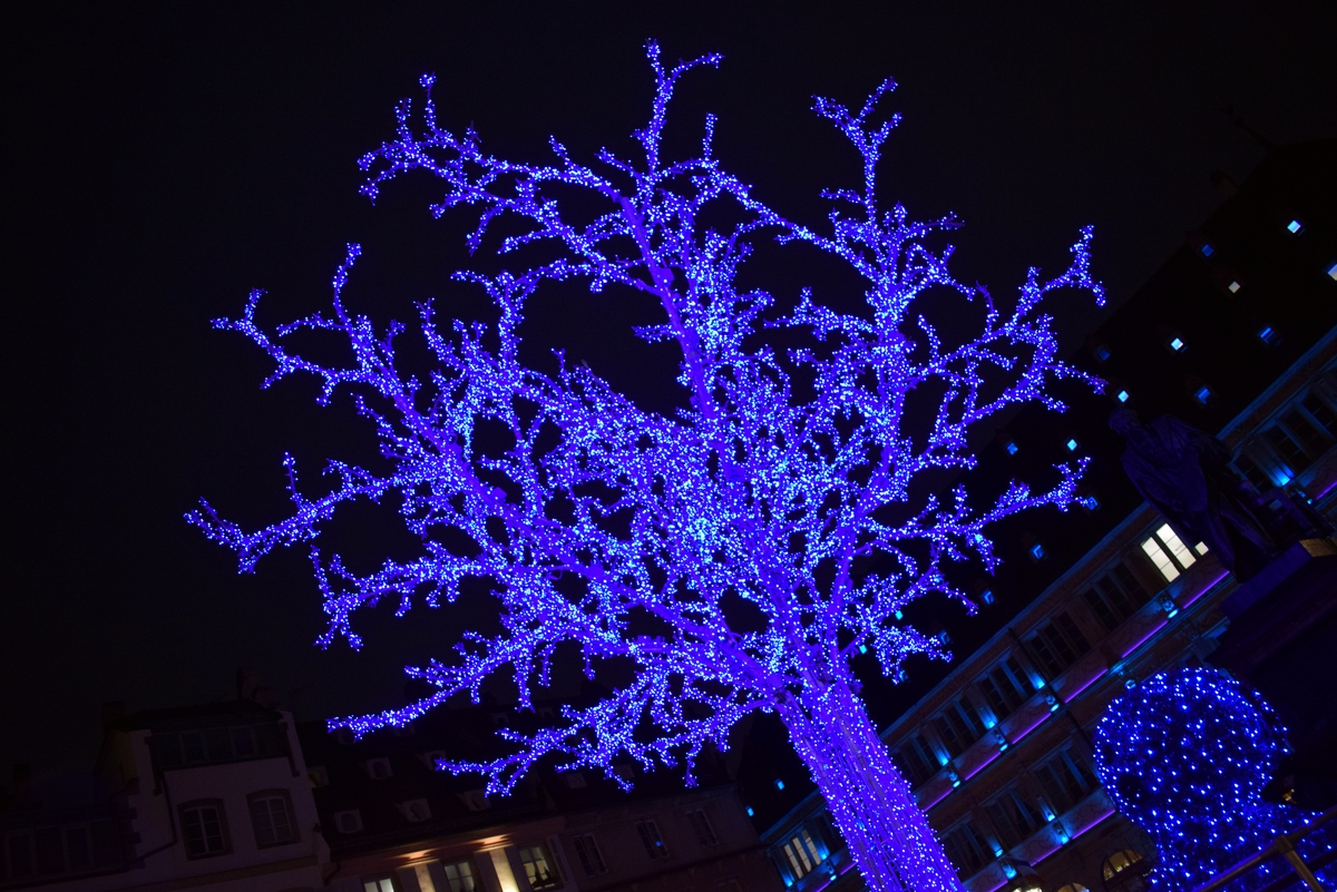 The Blue Tree on Place Gutenberg © French Moments
