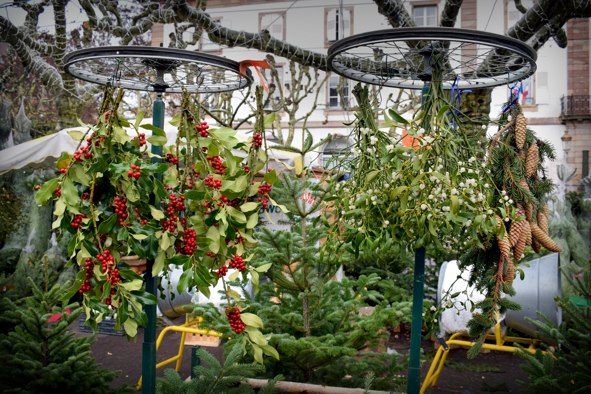 The Christmas tree market on place Broglie © French Moments