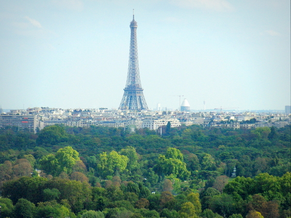 Eiffel Tower and Bois de Boulogne © French Moments