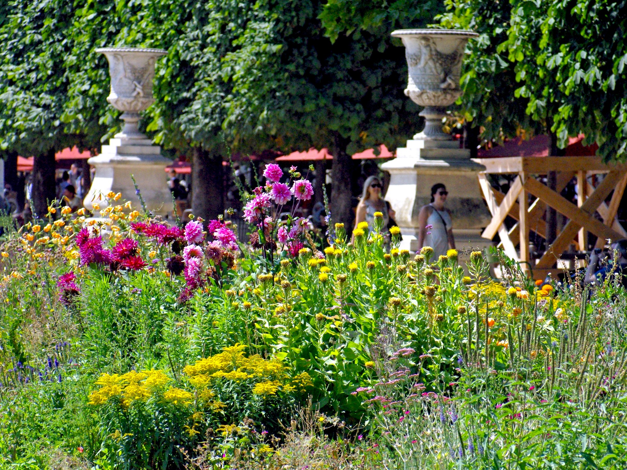 Is the tuileries garden in danger french moments for Jardin botanique paris