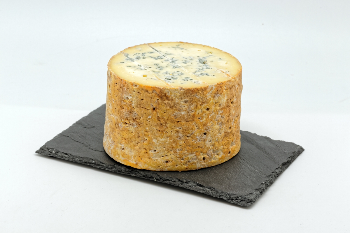 Fourme de Montbrison © Thesupermat - licence [CC BY-SA 4.0] from Wikimedia Commonsjpg