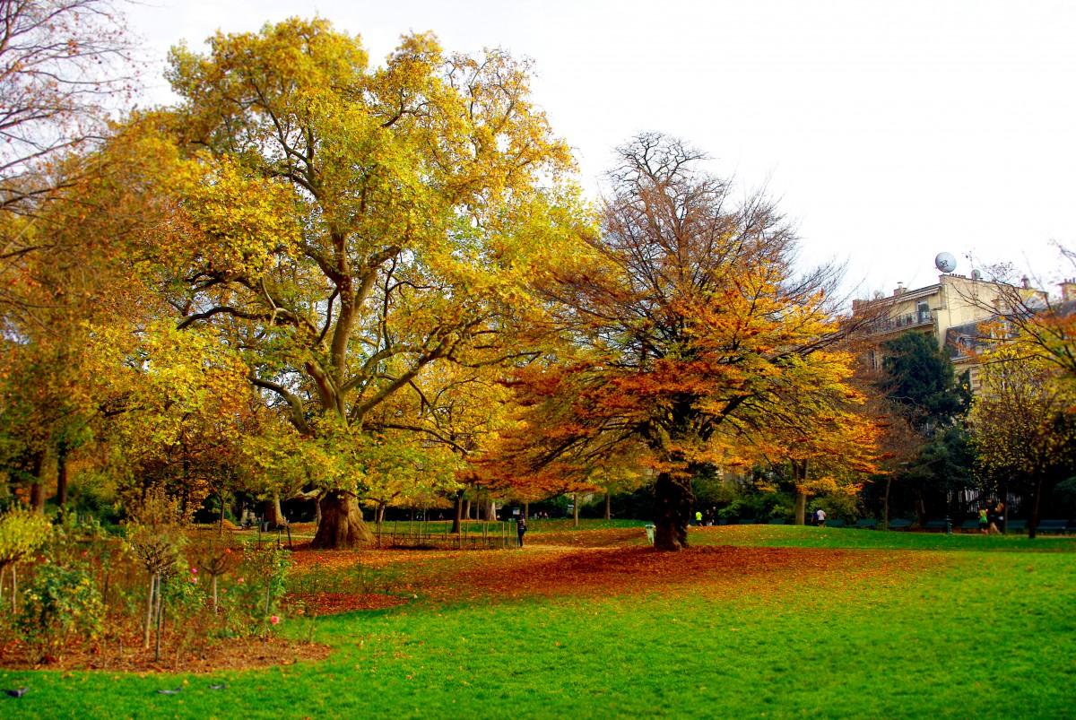 Autumn in Park Monceau, Paris © French Moments