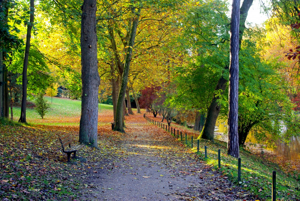 Autumn in France - in Poissy © French Moments