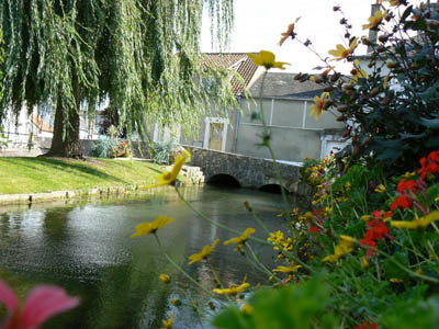 The mauves in Meung-sur-Loire © Office de Tourisme du Val des Mauves à Meung-sur-Loire