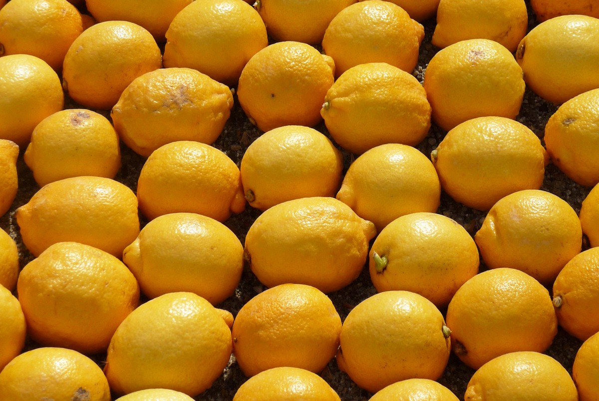 Lemons from Menton © Perline - licence [CC BY-SA 3.0] from Wikimedia Commons