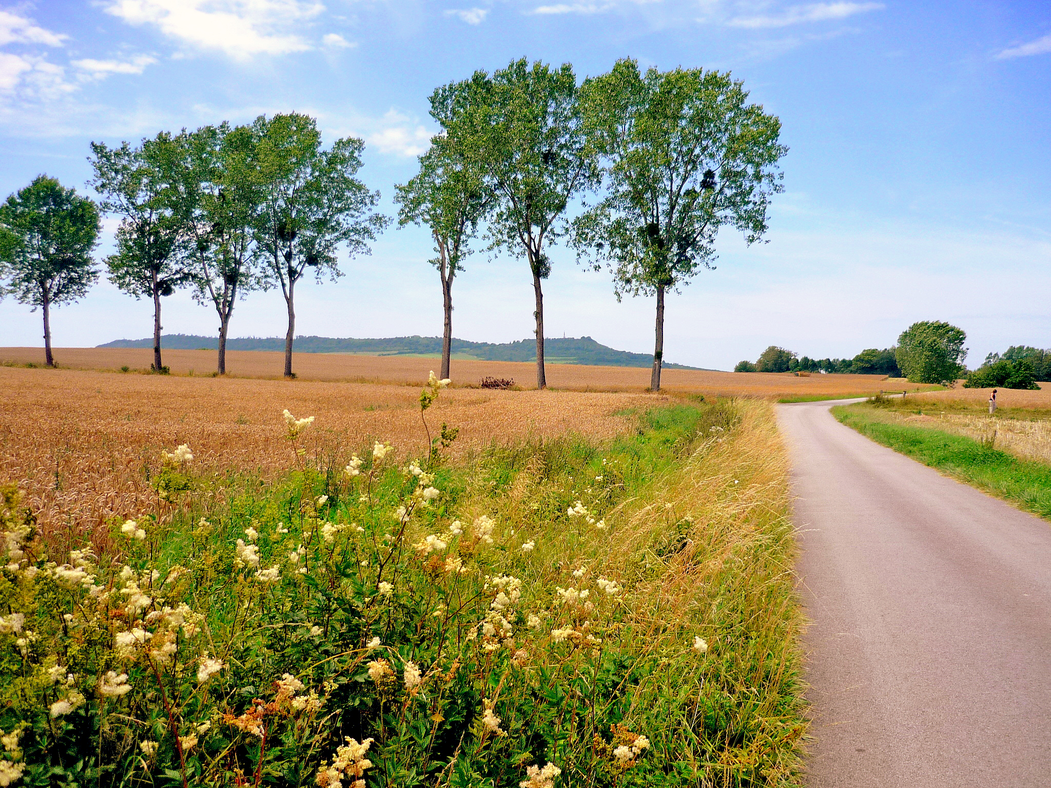 The countryside of Lorraine in Summer © French Moments