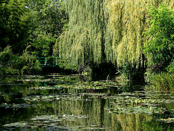 Water Garden © Remi Jouan - licence [CC BY-SA 3.0] from Wikimedia Commons