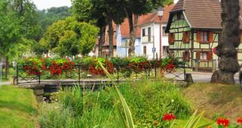Hirtzbach Summer 2014 13 copyright French Moments