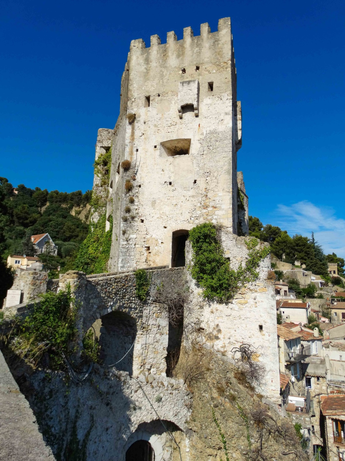 The Grimaldi Castle in Roquebrune-Cap-Martin © Leon petrosyan - licence [CC BY-SA 4.0] from Wikimedia Commons