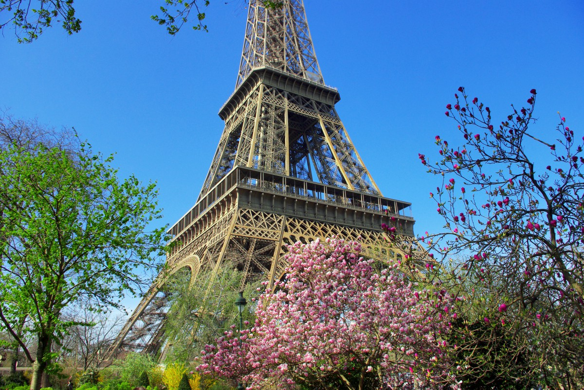 The Eiffel Tower in Spring © French Moments
