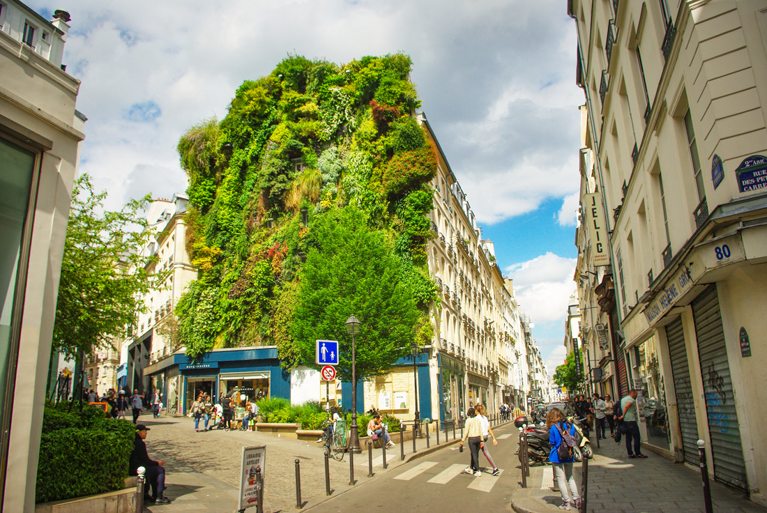Green wall at the corner of Rue d'Aboukir and Rue des Petits Carreaux, Second Arrondissement © French Moments