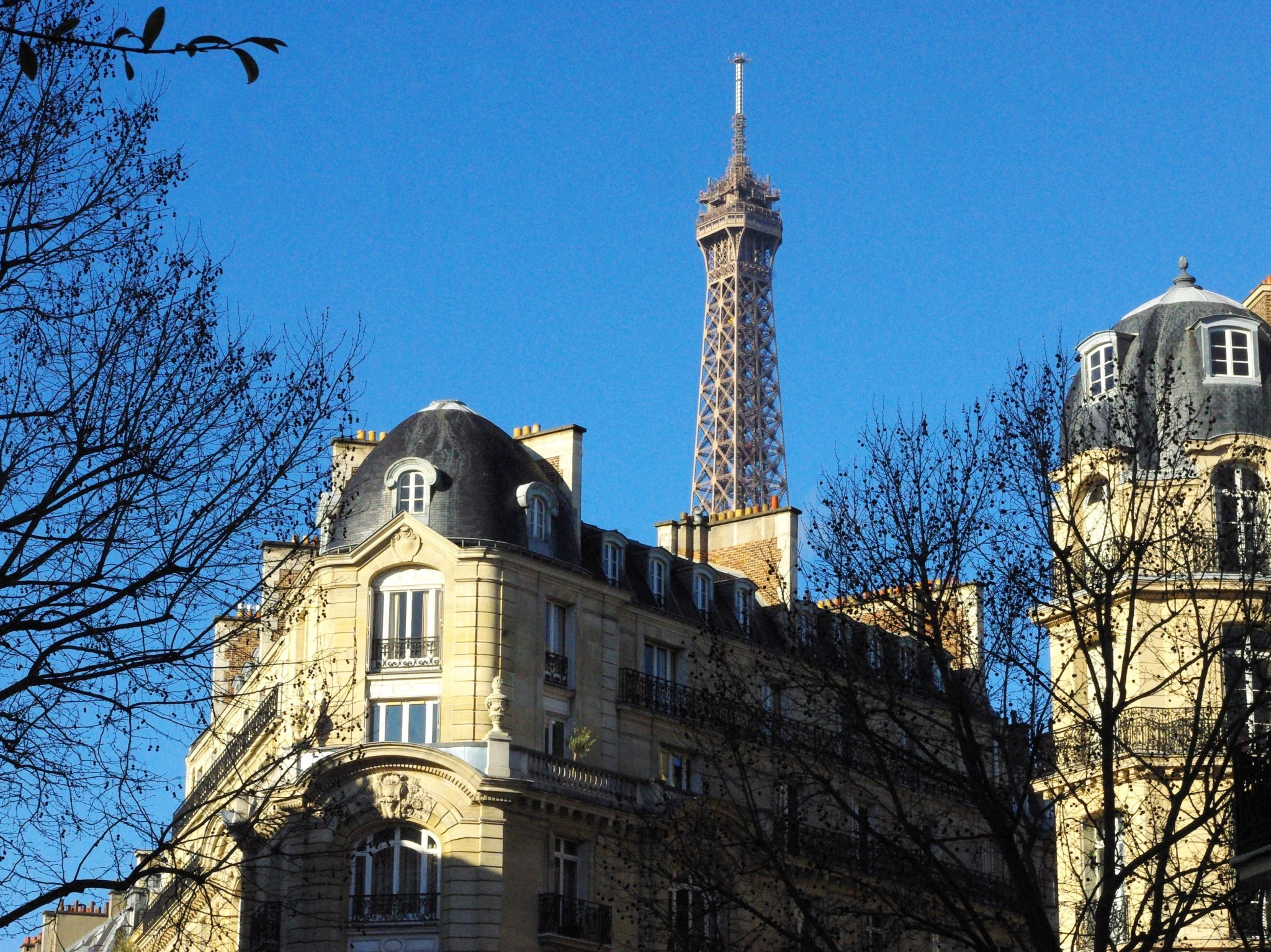 Paris Walk 22 February 2015 19 copyright French Moments
