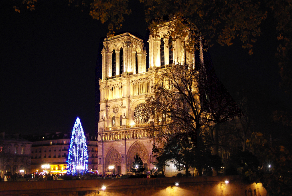 Notre-Dame Christmas 10 © French Moments