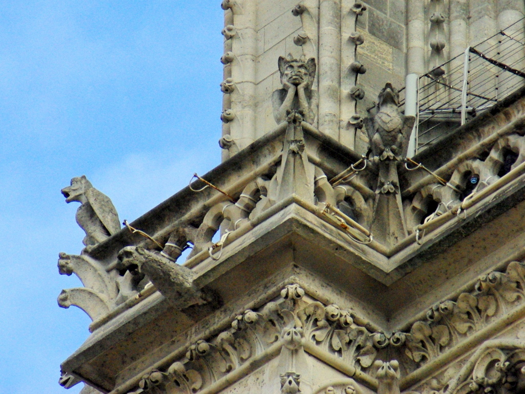 Chimera, Towers of Notre-Dame © French Moments