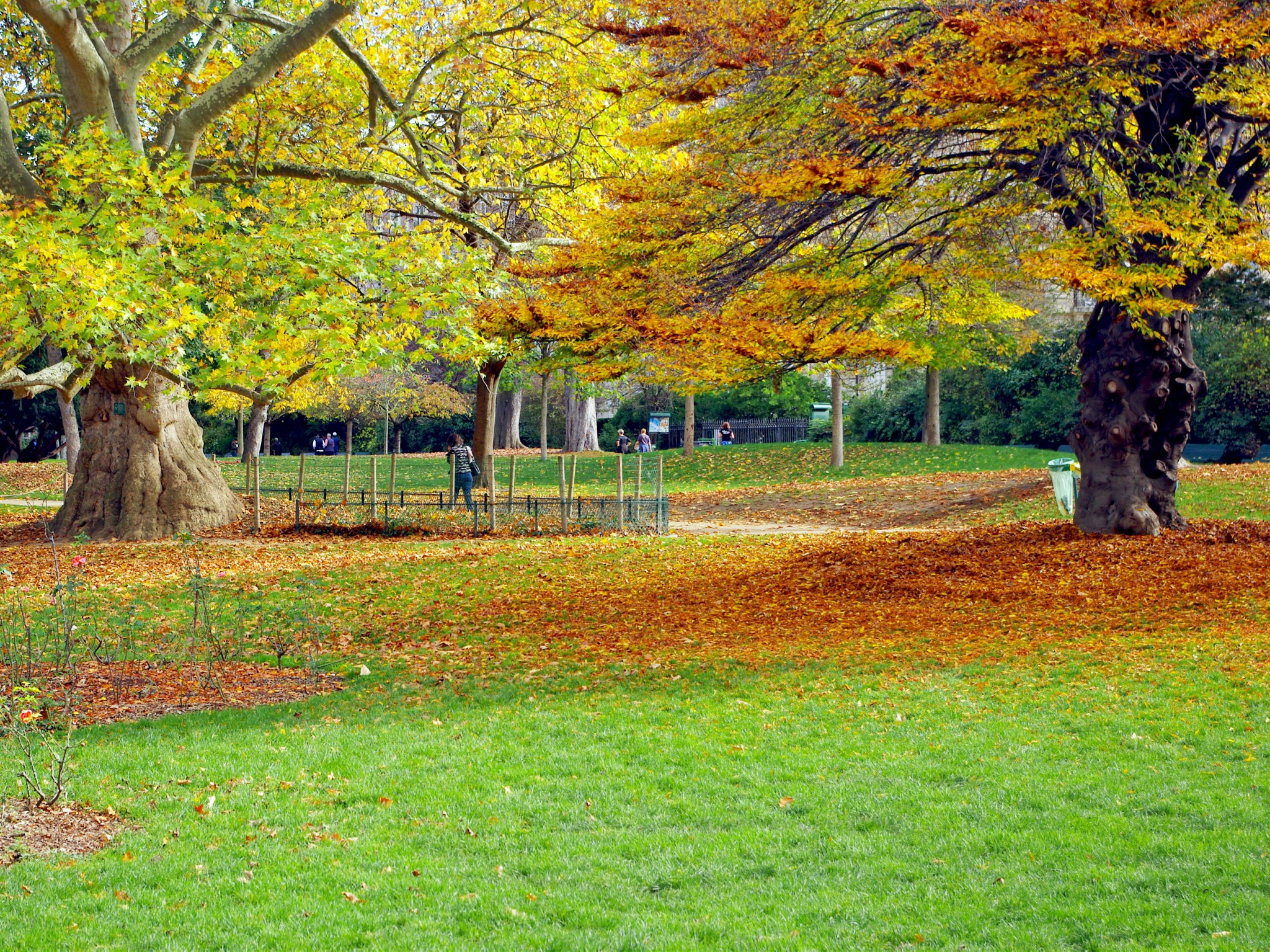 Autumn in Parc Monceau © French Moments