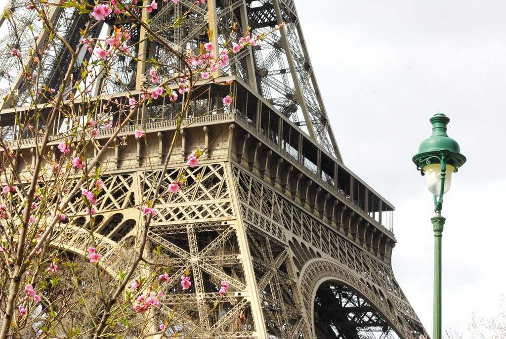 Spring at the Eiffel Tower 17 copyright French Moments