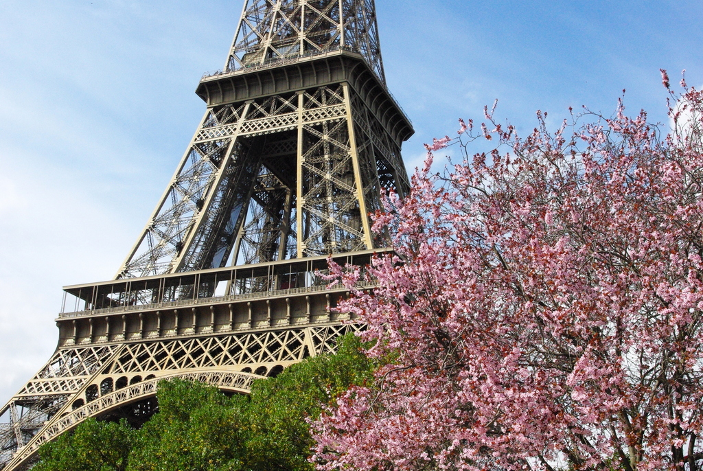 Spring at the Eiffel Tower 26 copyright French Moments