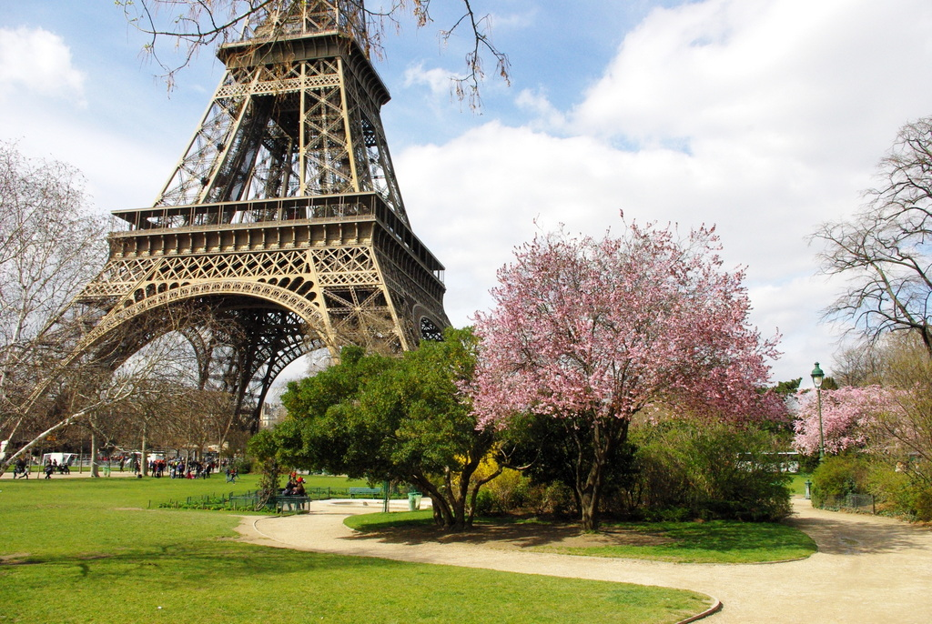 Spring at the Eiffel Tower 27 copyright French Moments