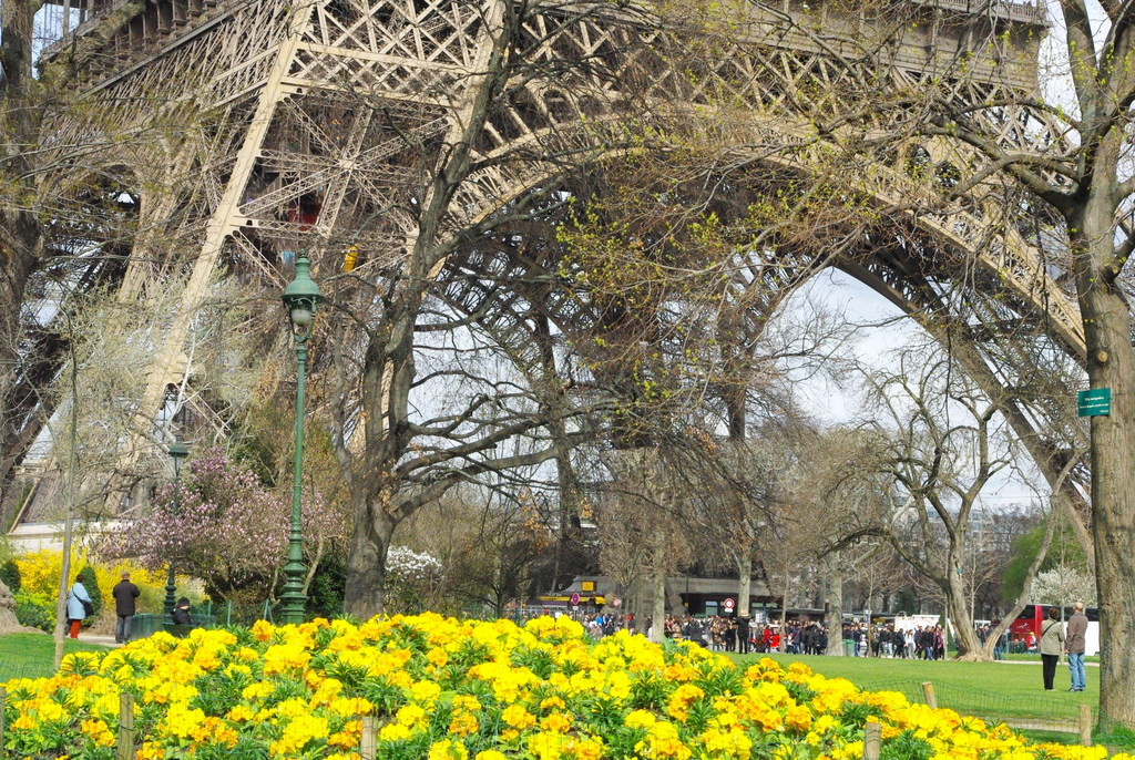 Spring at the Eiffel Tower 9 copyright French Moments