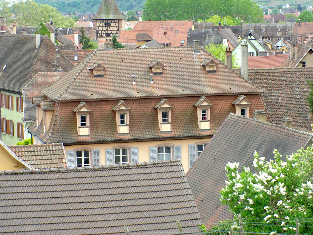 General view of Turckheim © French Moments