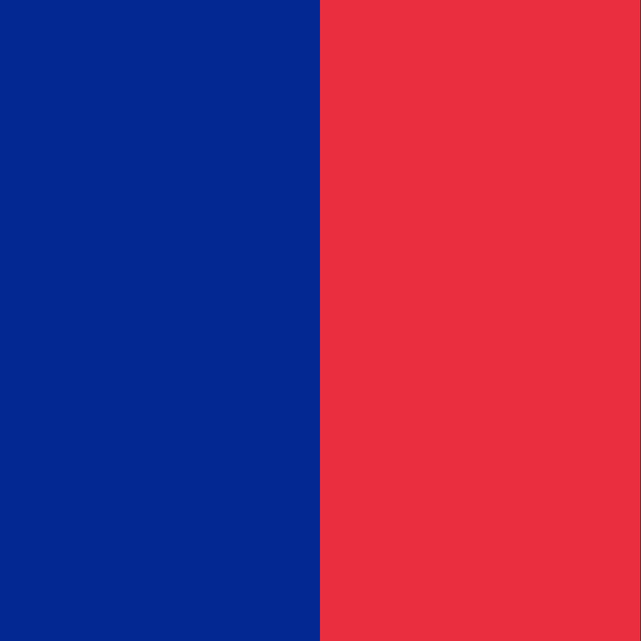The flag of Paris