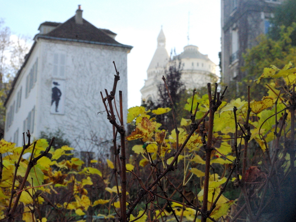 Vineyard of Montmartre in Autumn © French Moments