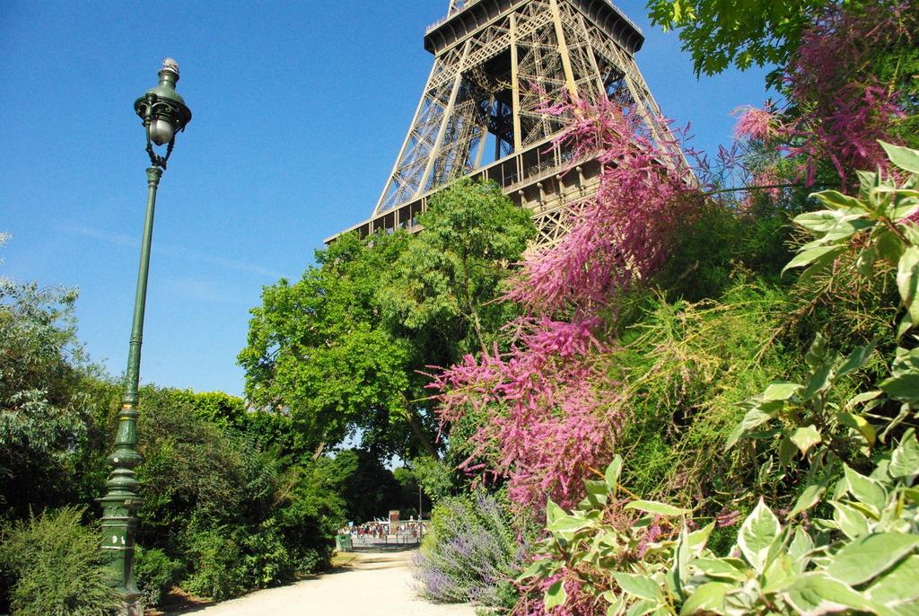 Champ de Mars Paris June 2015 21 © French Moments