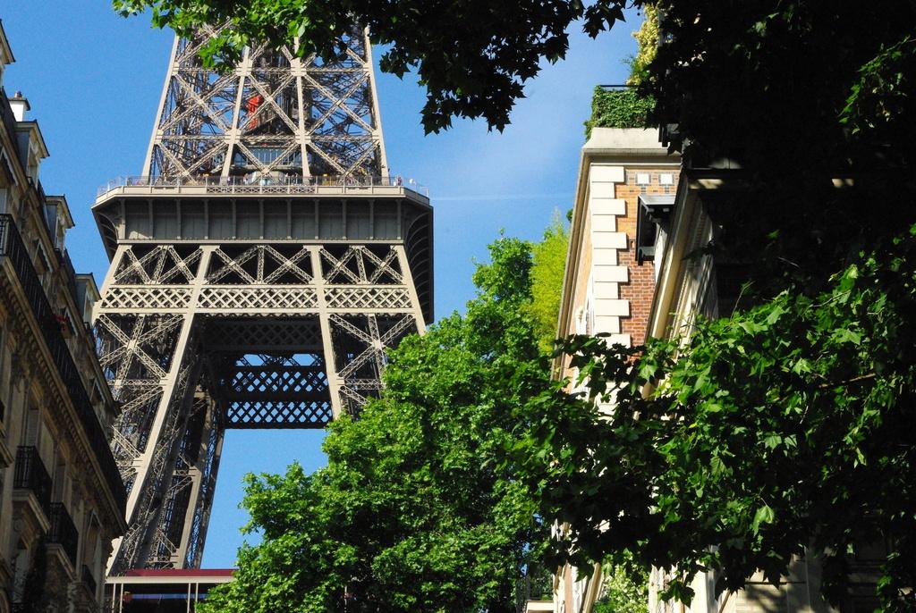 Champ de Mars Paris June 2015 31 © French Moments