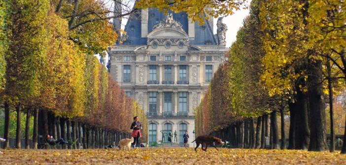 Terrasse des bords de l'eau copyright French Moments