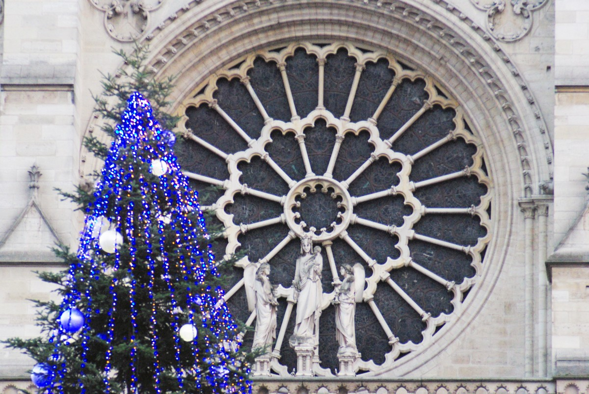 The West Rose Window, Notre Dame de Paris © French Moments