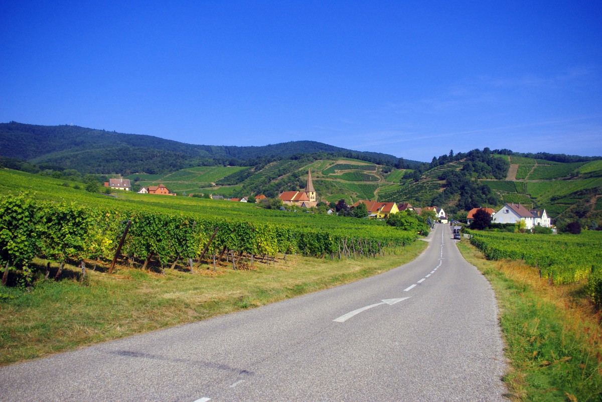 The vineyards of Niedermorschwihr © French Moments