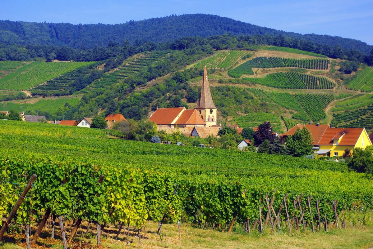 Discover The Village Of Niedermorschwihr Alsace French