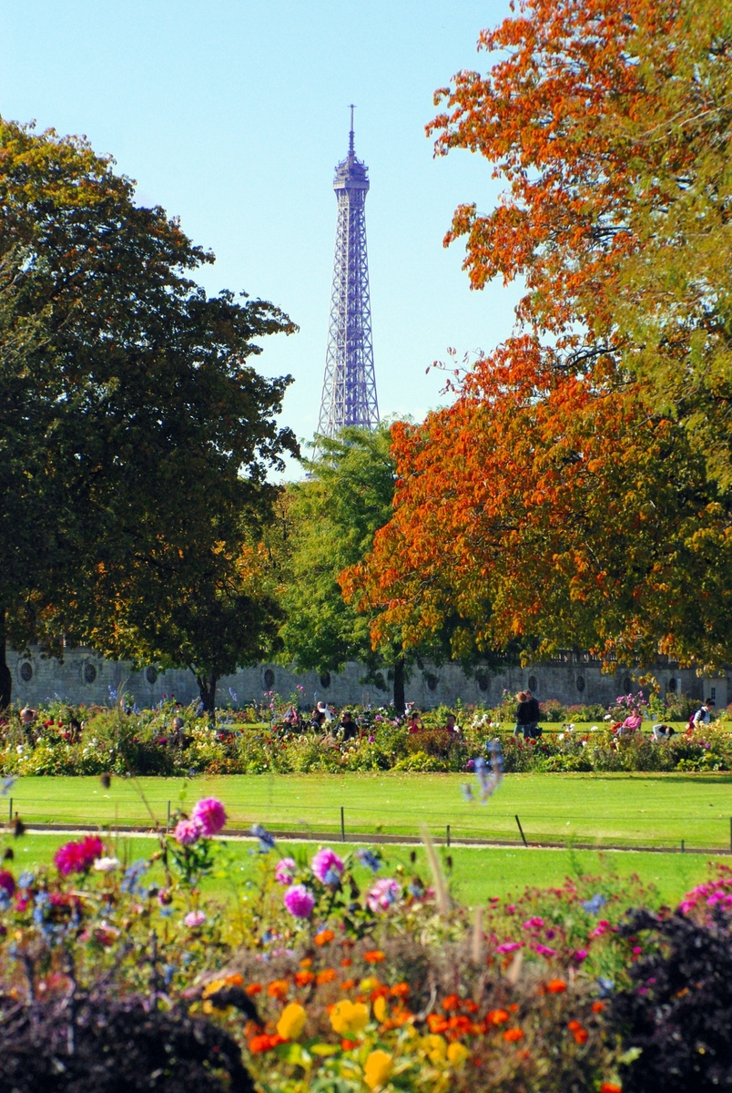 Tuileries Eiffel Tower Autumn © French Moments