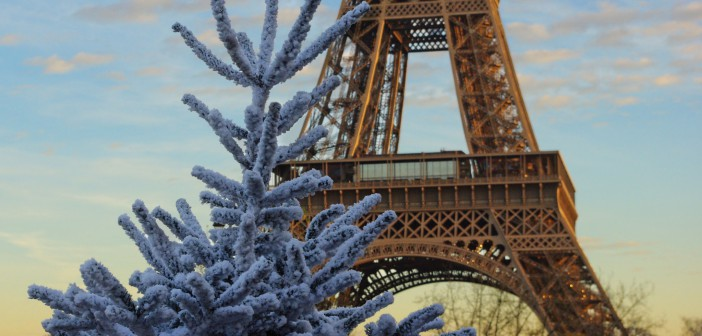 White Christmas Tree and Eiffel Tower 02 © French Moments