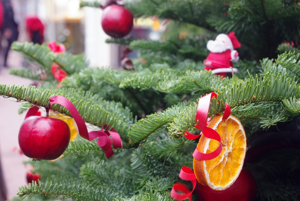 Fruit on a Christmas tree, Maisons-Laffitte © French Moments
