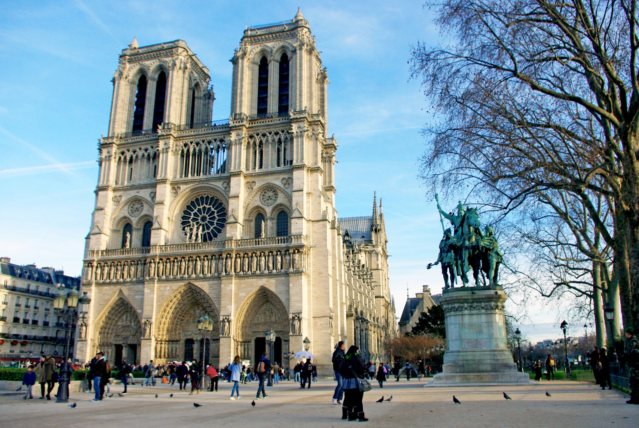 no christmas tree in front of notredame cathedral this