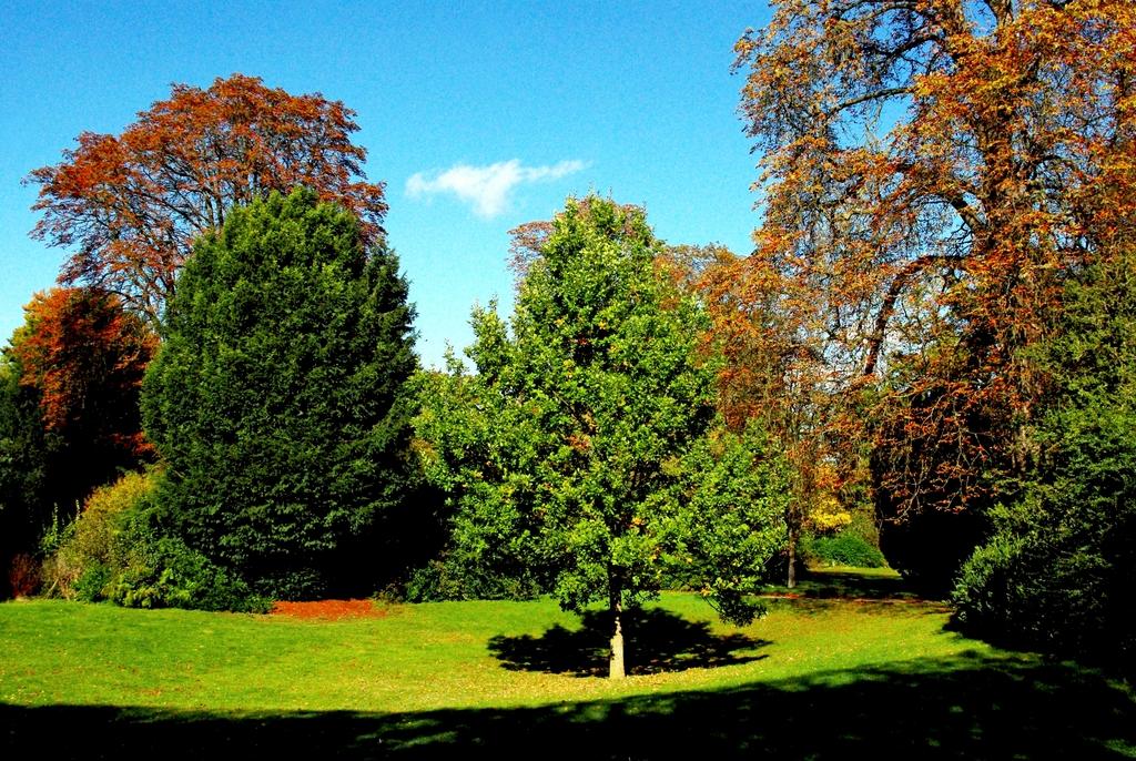 English Garden, Saint-Germain-en-Laye © French Moments