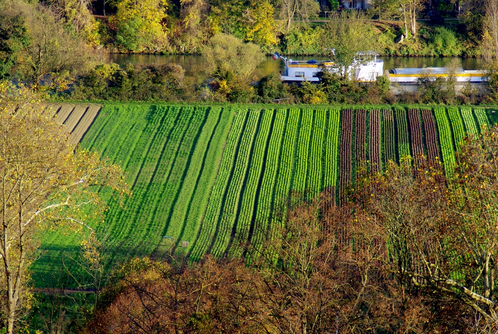 French countryside near Saint-Germain-en-Laye © French Moments