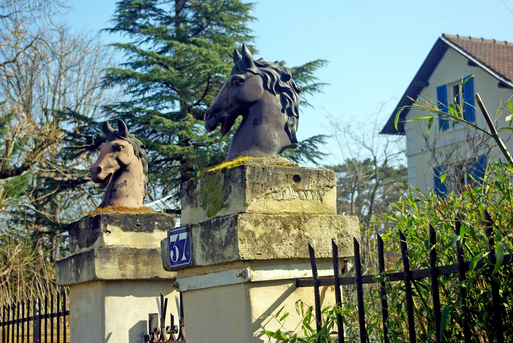 March in Maisons-Laffitte 12 © French Moments
