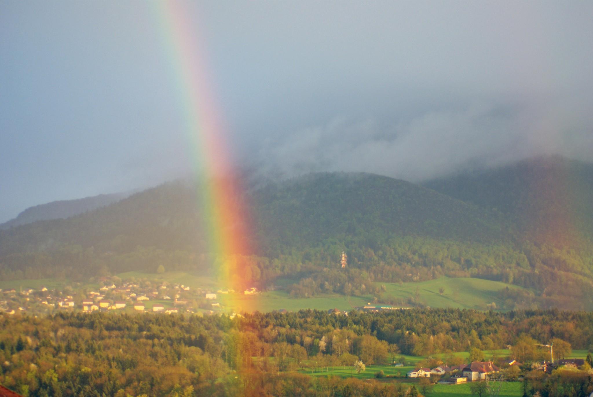 Rainbow Argonay © French Moments