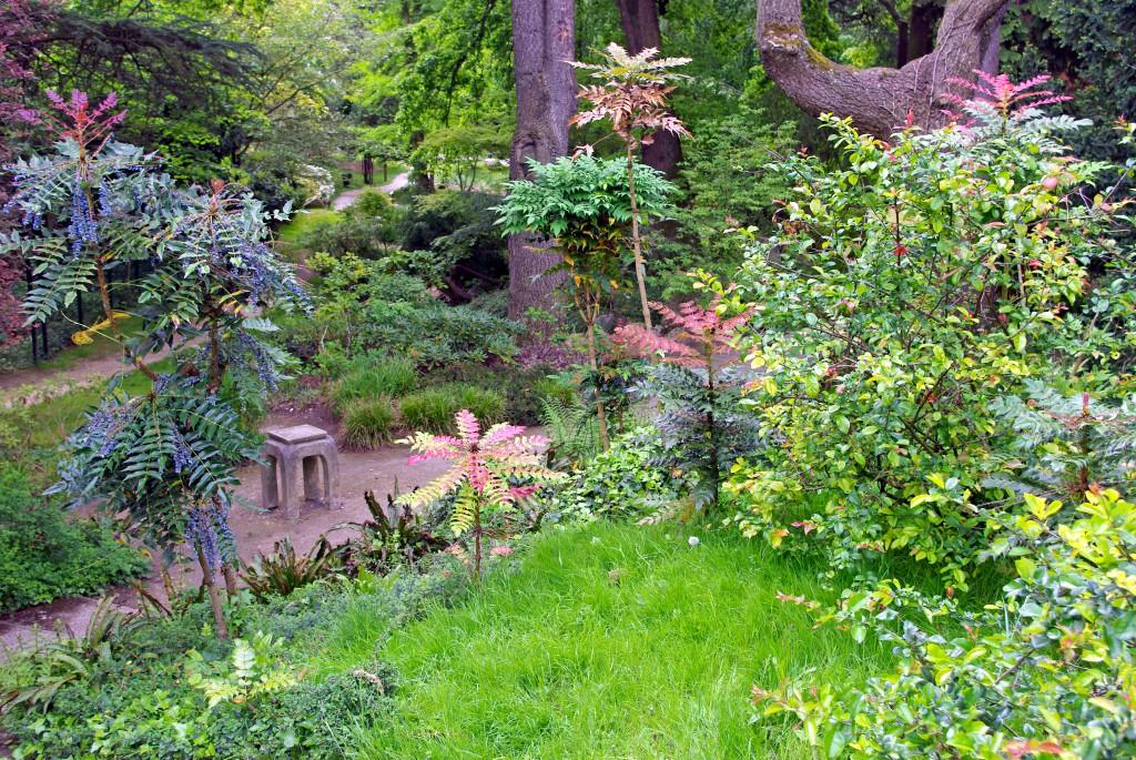 Lush vegetation in the Japanese garden of the Japanese Garden of the Parc de Boulogne © French Moments