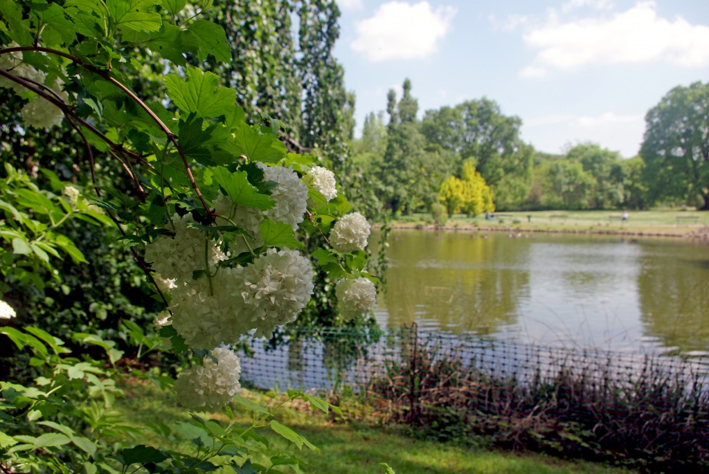 The big pond of the Parc de Boulogne © French Moments