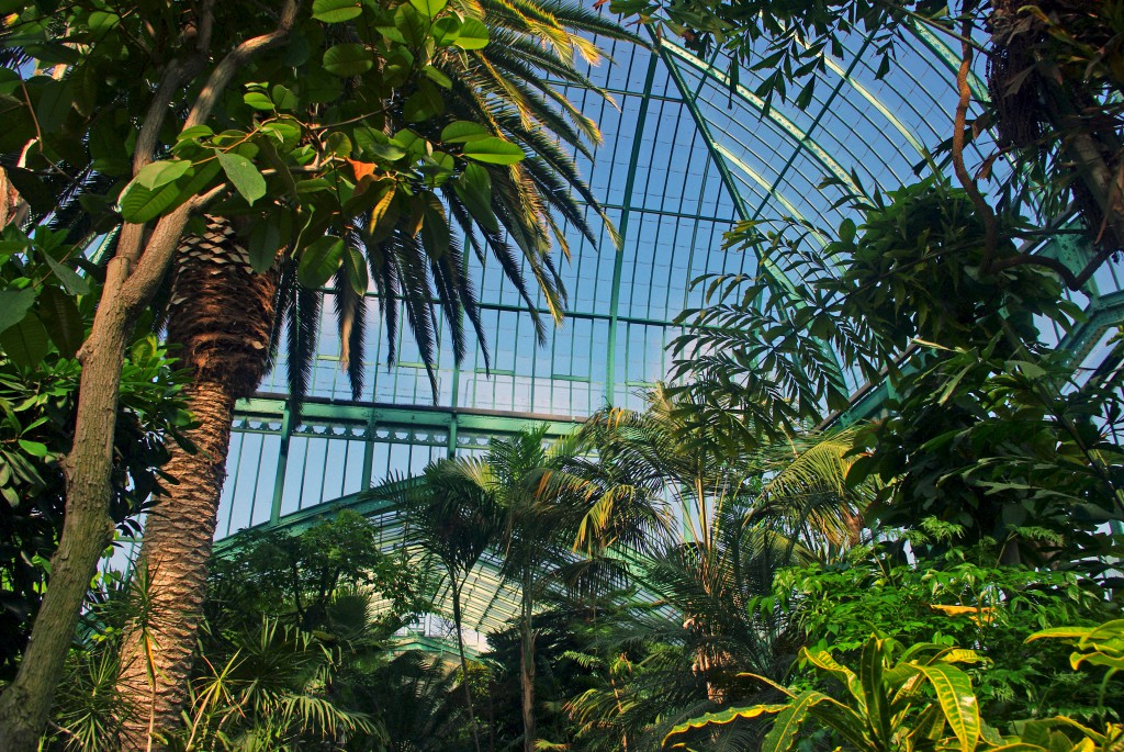 It looks like being in a tropical country far far away from Paris, France. At the Jardin des Serres d'Auteuil © French Moments