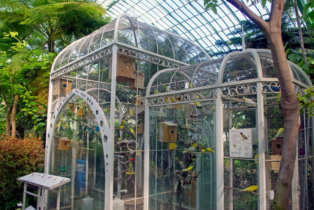 The vivarium inside the Palm-House, Jardin des Serres d'Auteuil © French Moments