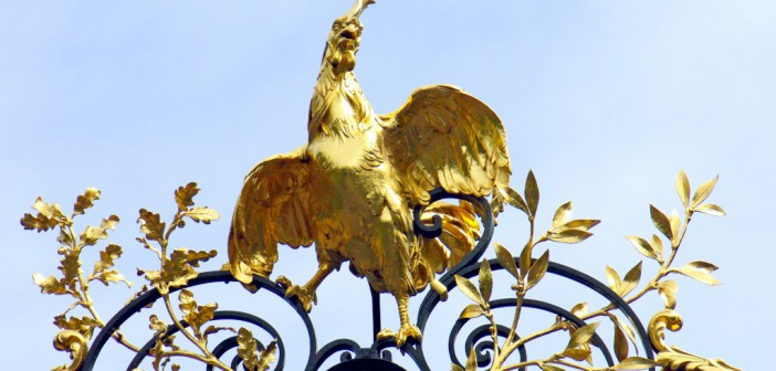 Elysee Gate Rooster © French Moments